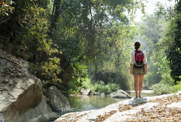 Oplev den uberørte natur på øerne i Thailand