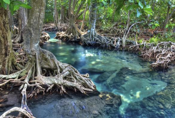 Leg Robinson Crusoe på en thailandsk ø